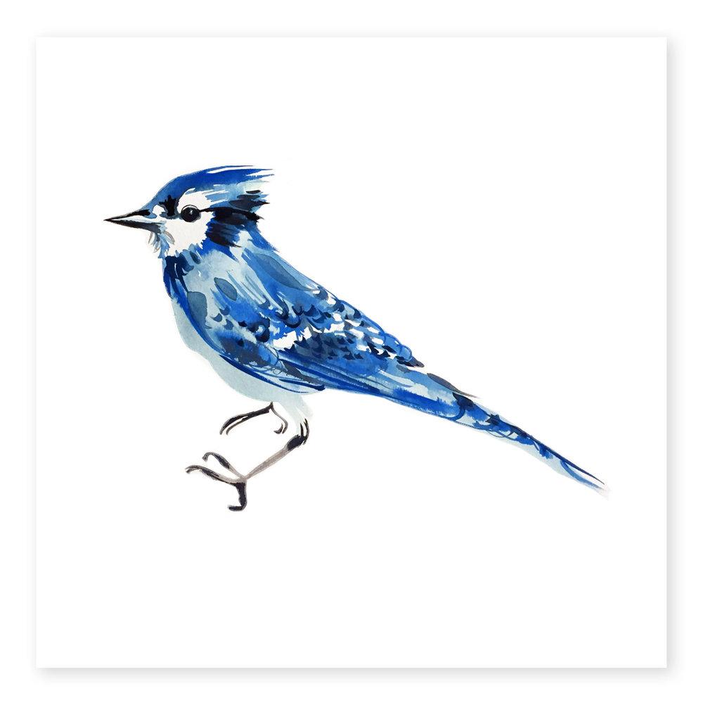 Blue-ArtOfMarina_1024x.jpg