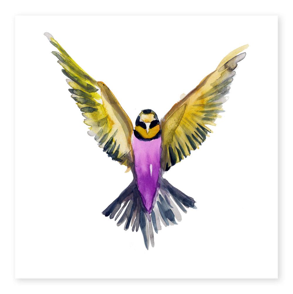 Freebird-ArtOfMarina_1024x-working.jpg