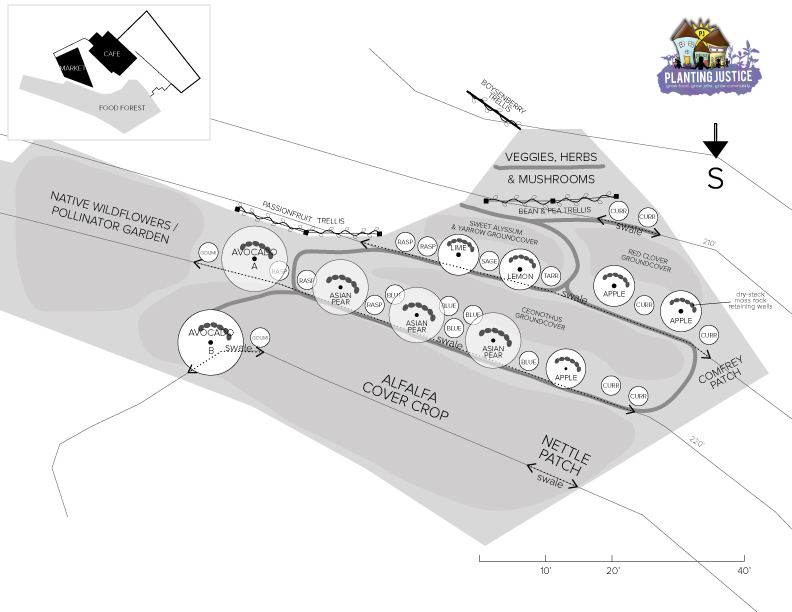 design-omar