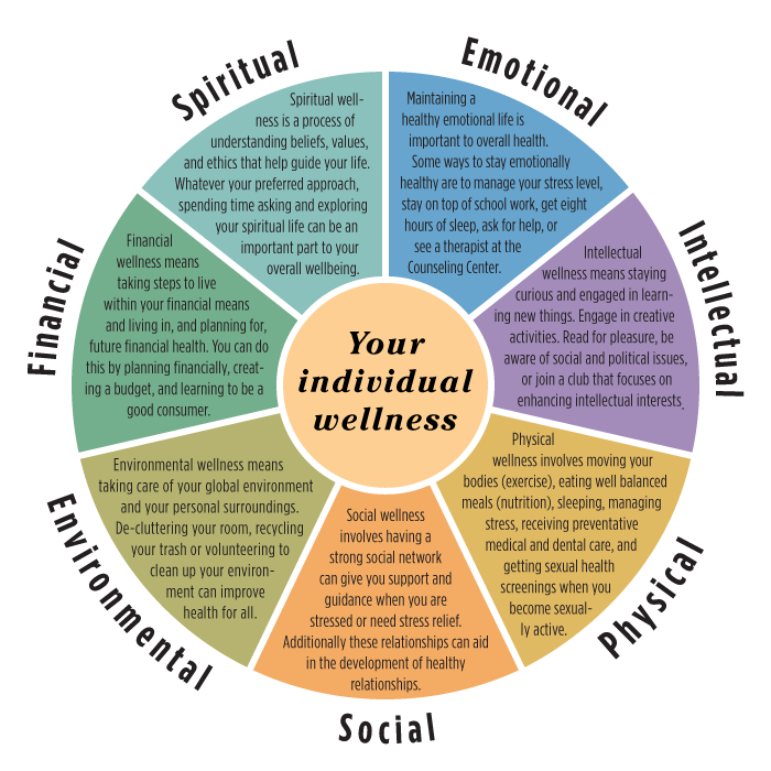 Holistic Wellness - Naturally Bronwyn |Holistic Health Wheel