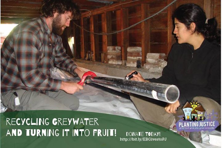 We_re_turning_greywater_into_fruit__Support_this_work_and_keep_the_Bay_Area_green___EastBayGives_httpow.lywyIq3.jpg