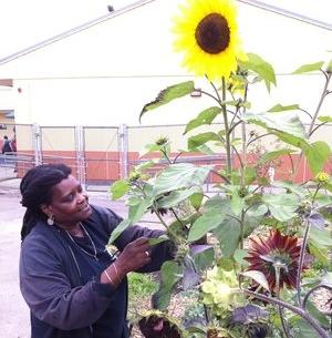 Planting Justice Board Member, Joy