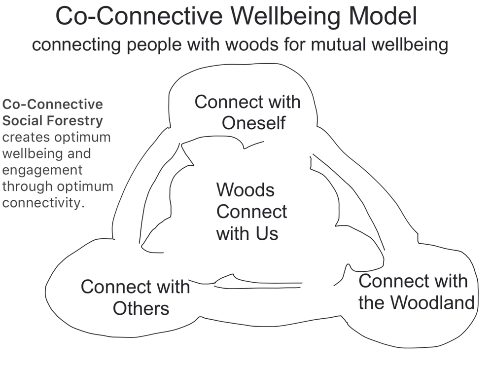 Co-Connective Wellbeing Model.PNG