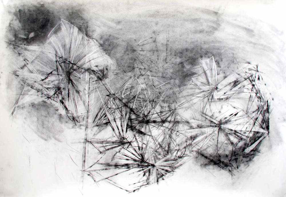 Transcription.  2014. Charcoal on Paper. 30 inches x 44 inches.