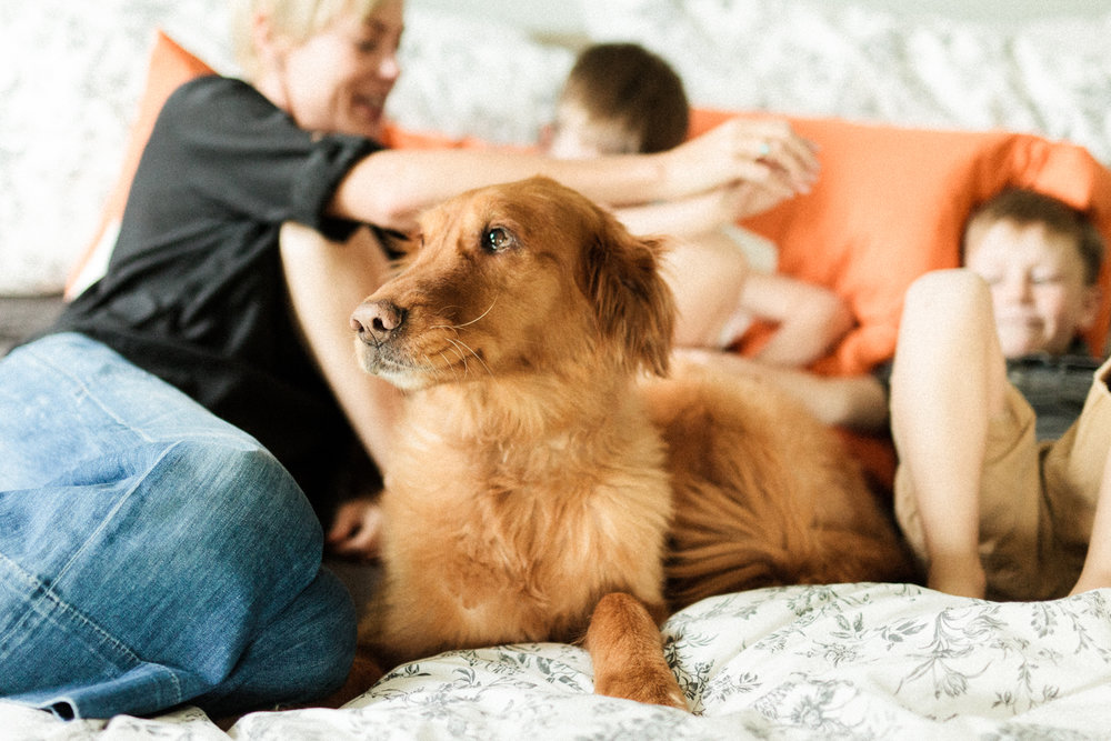 in-home-family-photography-session-with-dog-salt-lake-city-utah