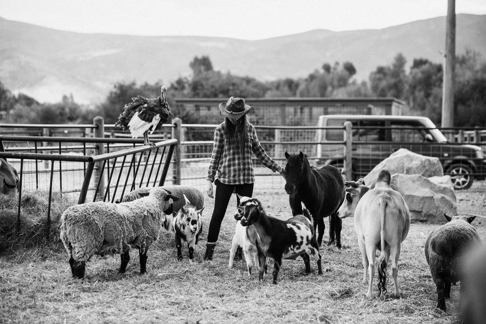 candid-black-and-white-photo-of-girl-and-farm-animals-in-heber-utah