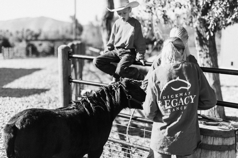 kids-decorating-miniature-horse-at-legacy-ranch-heber-utah