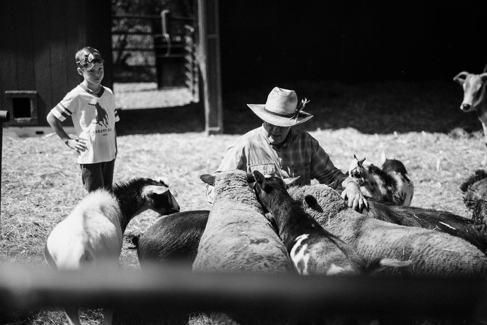 man-and-boy-feeding-miniature-farm-animals-in-heber-utah