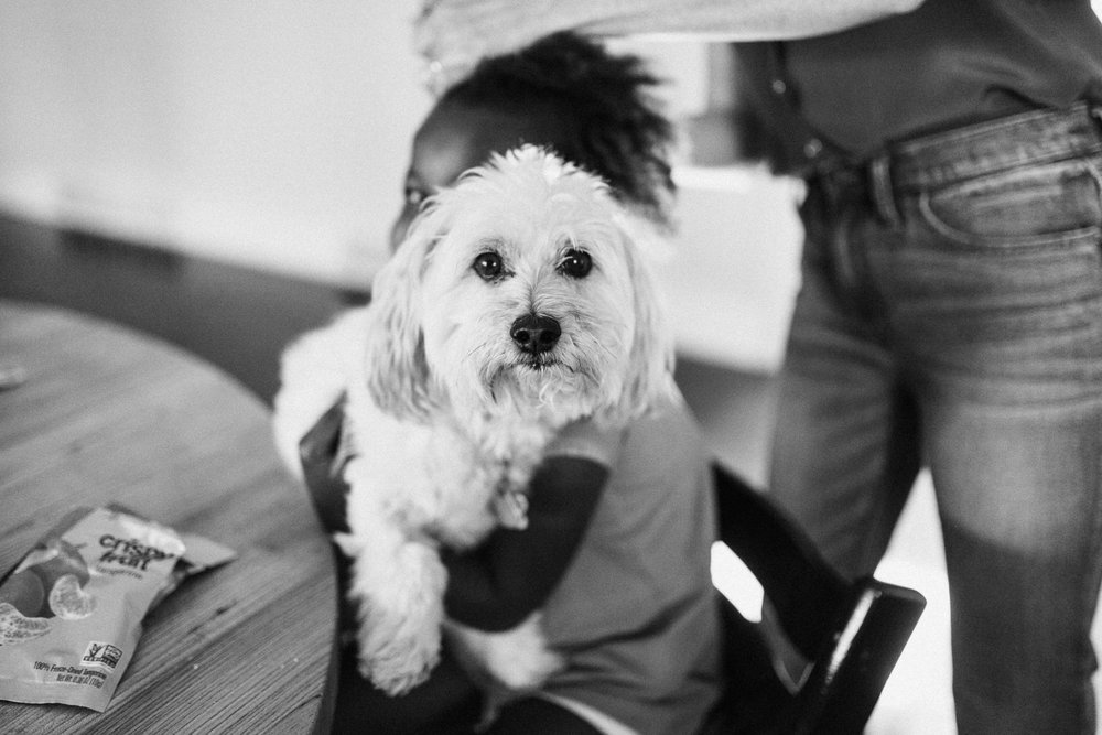 candid-black-and-white-photo-of-girl-holding-dog-during-in-home-session-with-jen-fairchild-in-salt-lake-city-utah