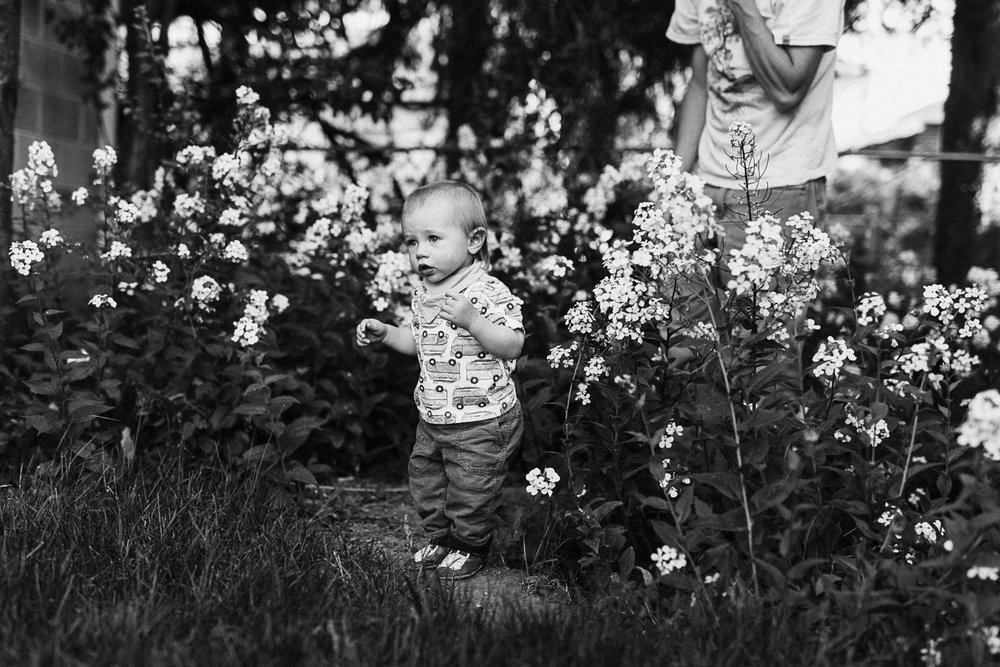 natural-artistic-clean-image-of-boy-in-field-of-flowers-during-at-home-session-with-jen-farichild-photography-slc-ut