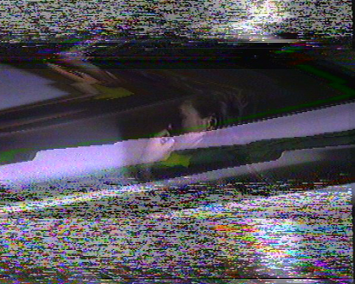Snapshot_0000_0290.jpg