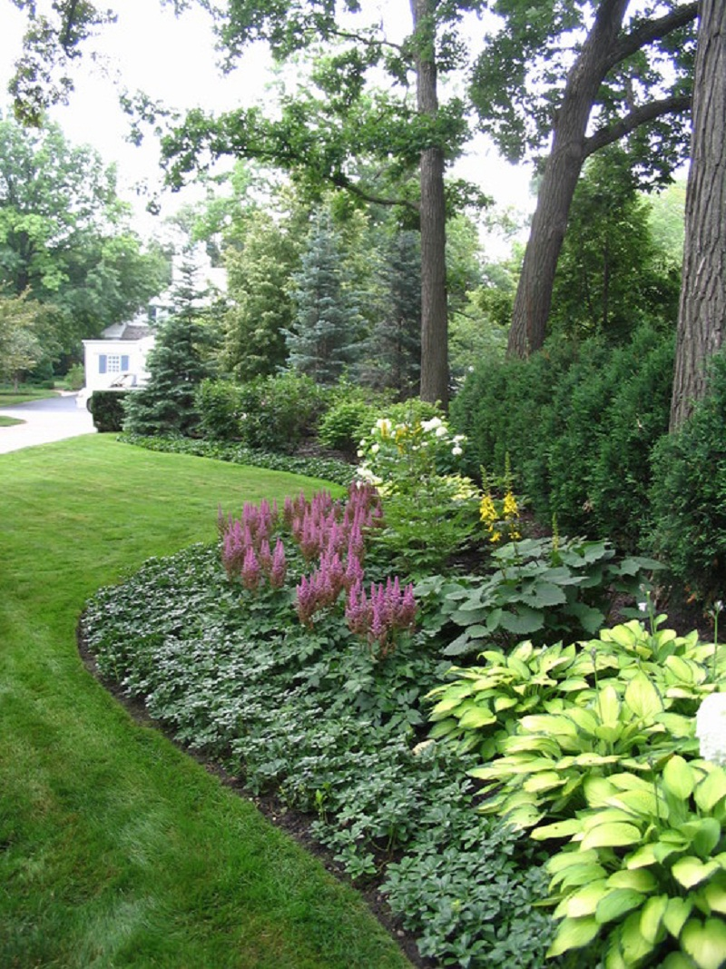 Vp landscaping ny Low maintenance garden border ideas