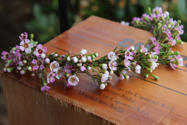pink wax flower floral crown sophisticated floral designs portland oregon