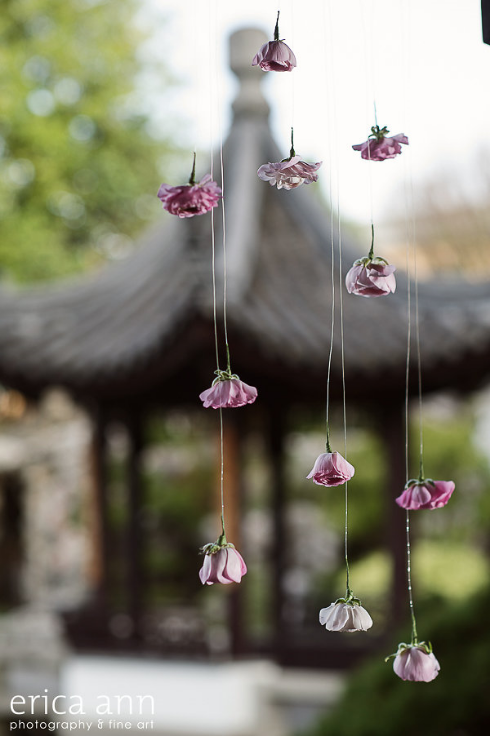 suspended flowers hanging floating flower blooms ranunculus