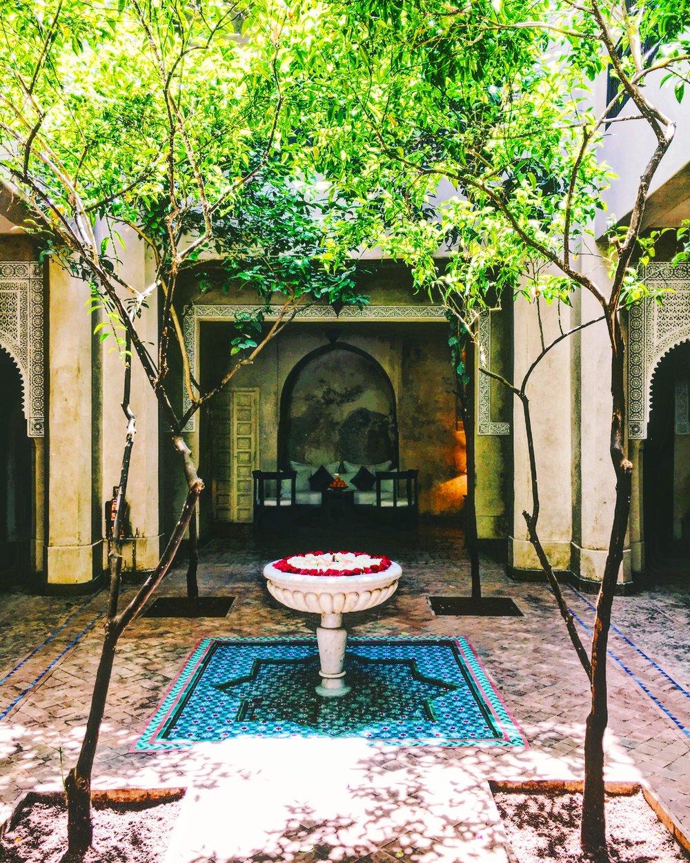 Dar Les Cigognes: Our Oasis in Marrakech