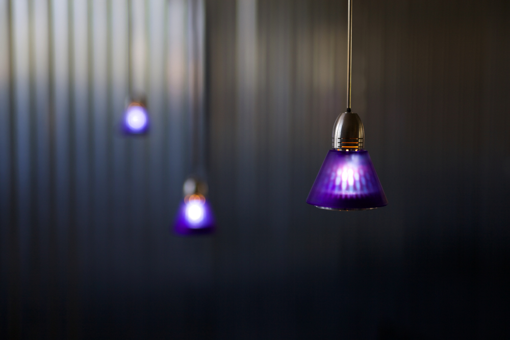 Zip-lights-hanging.jpg