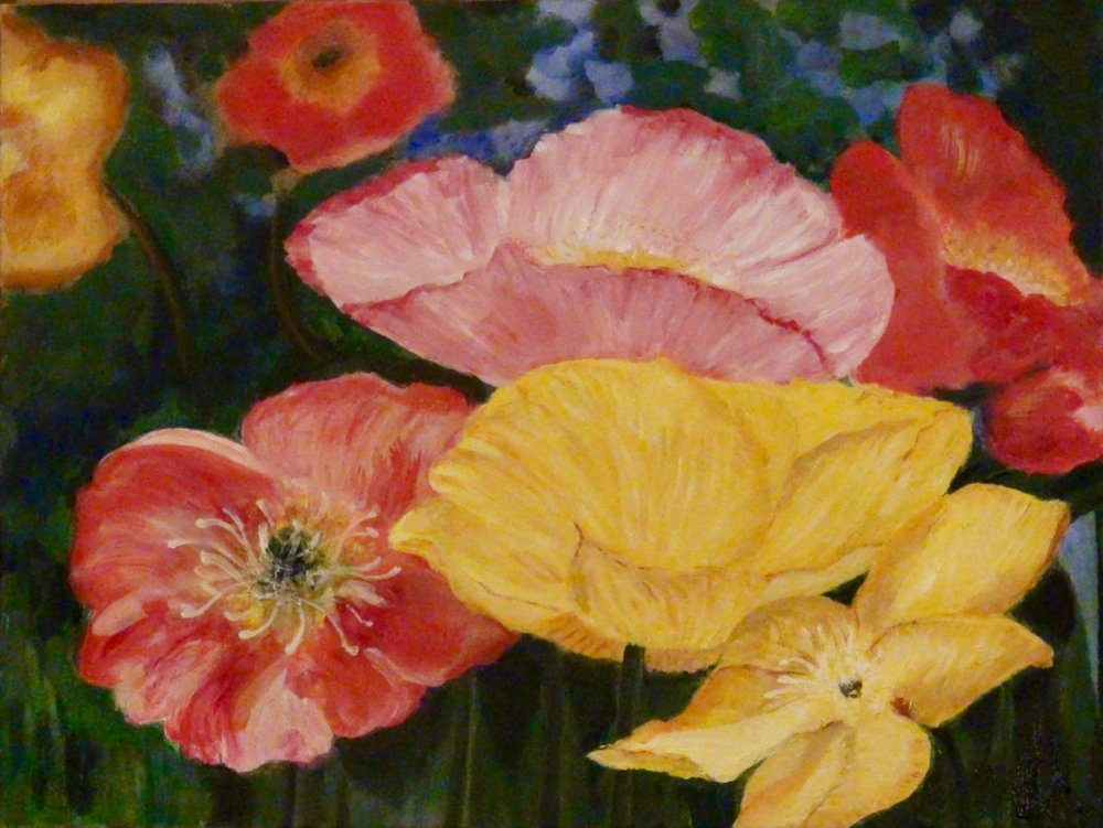 """Iceland Poppies"" - Oil, 20""x 16"" (2015)"