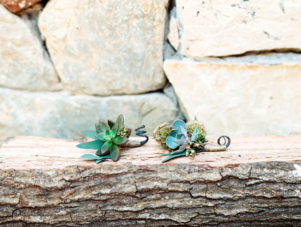 Dana Fernandez Photography Agave Road Agave Estates Houston Texas Wedding Photographer Destination Southwest Film-21.jpg