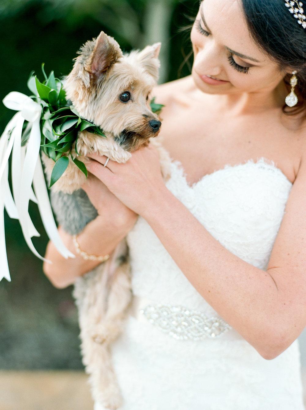 Briscoe-Manor-Houston-Wedding-Photographer-Modern-Luxury-Weddings-Dana-Fernandez-Photograpy-Fine-Art-Photographer-Houston-Film-Destination-PNW-Wedding-Photographer-27.jpg
