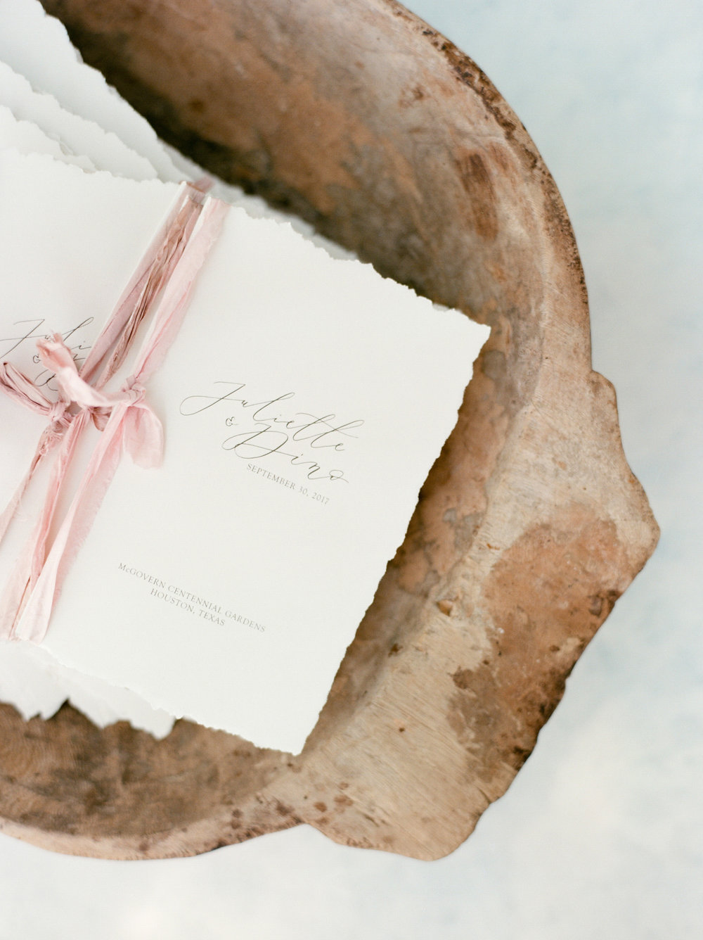 Martha-Stewart-Wedding-Dana-Fernandez-Photography-Josh-Texas-Film-Houston-Wedding-Fine-Art-Photographer-McGovern-Centennial-Gardens-Top-Best-12.jpg