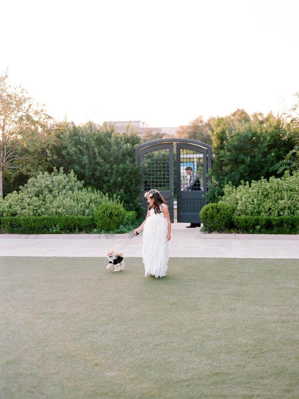 Martha-Stewart-Wedding-Dana-Fernandez-Photography-Josh-Texas-Film-Houston-Wedding-Fine-Art-Photographer-McGovern-Centennial-Gardens-Top-Best-29.jpg