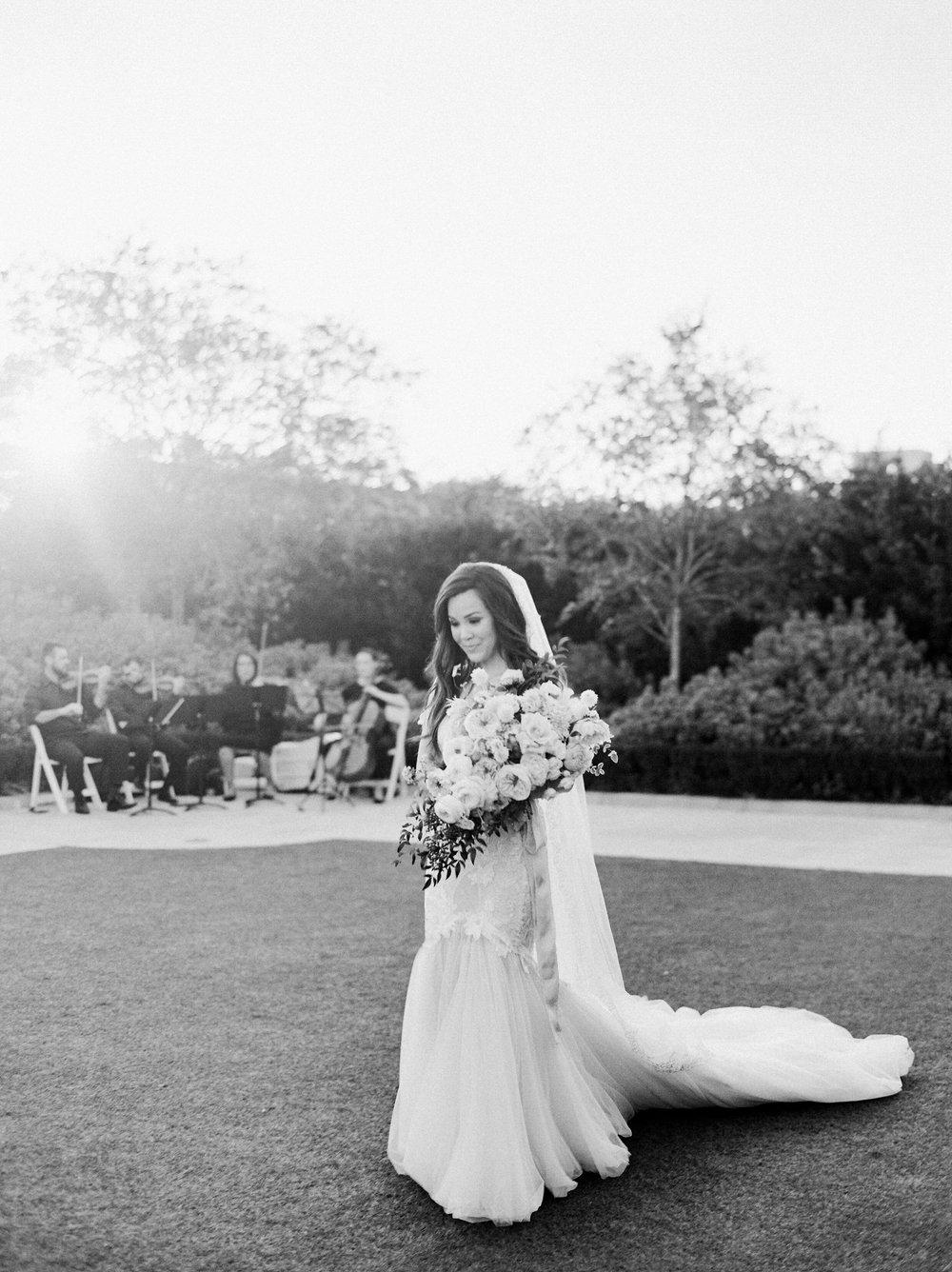Martha-Stewart-Wedding-Dana-Fernandez-Photography-Josh-Texas-Film-Houston-Wedding-Fine-Art-Photographer-McGovern-Centennial-Gardens-Top-Best-30.jpg