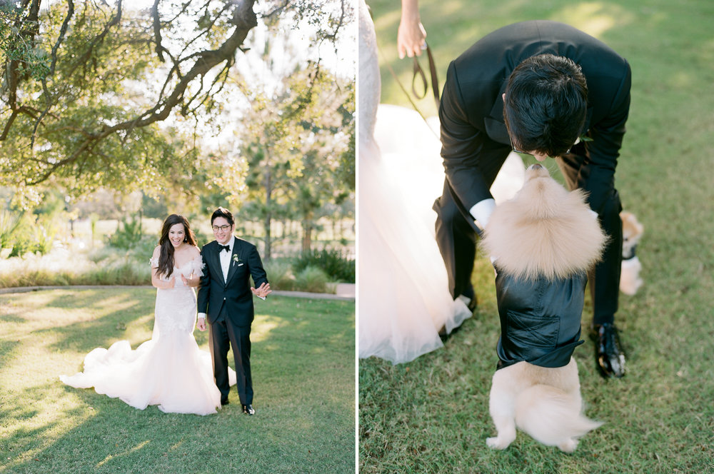 Martha-Stewart-Wedding-Dana-Fernandez-Photography-Josh-Texas-Film-Houston-Wedding-Fine-Art-Photographer-McGovern-Centennial-Gardens-Top-Best-306.jpg
