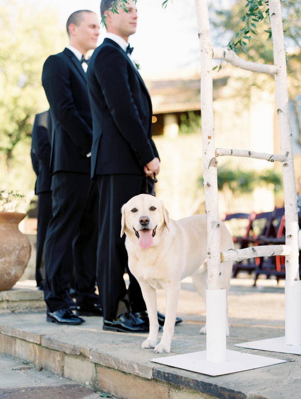 Escondido-Golf_Lake-Club-Hill-Country-Houston-Wedding-Photographer-Best-Top-Luxury-Destination-Engagements-Portrait-Austin-Photography-93.jpg