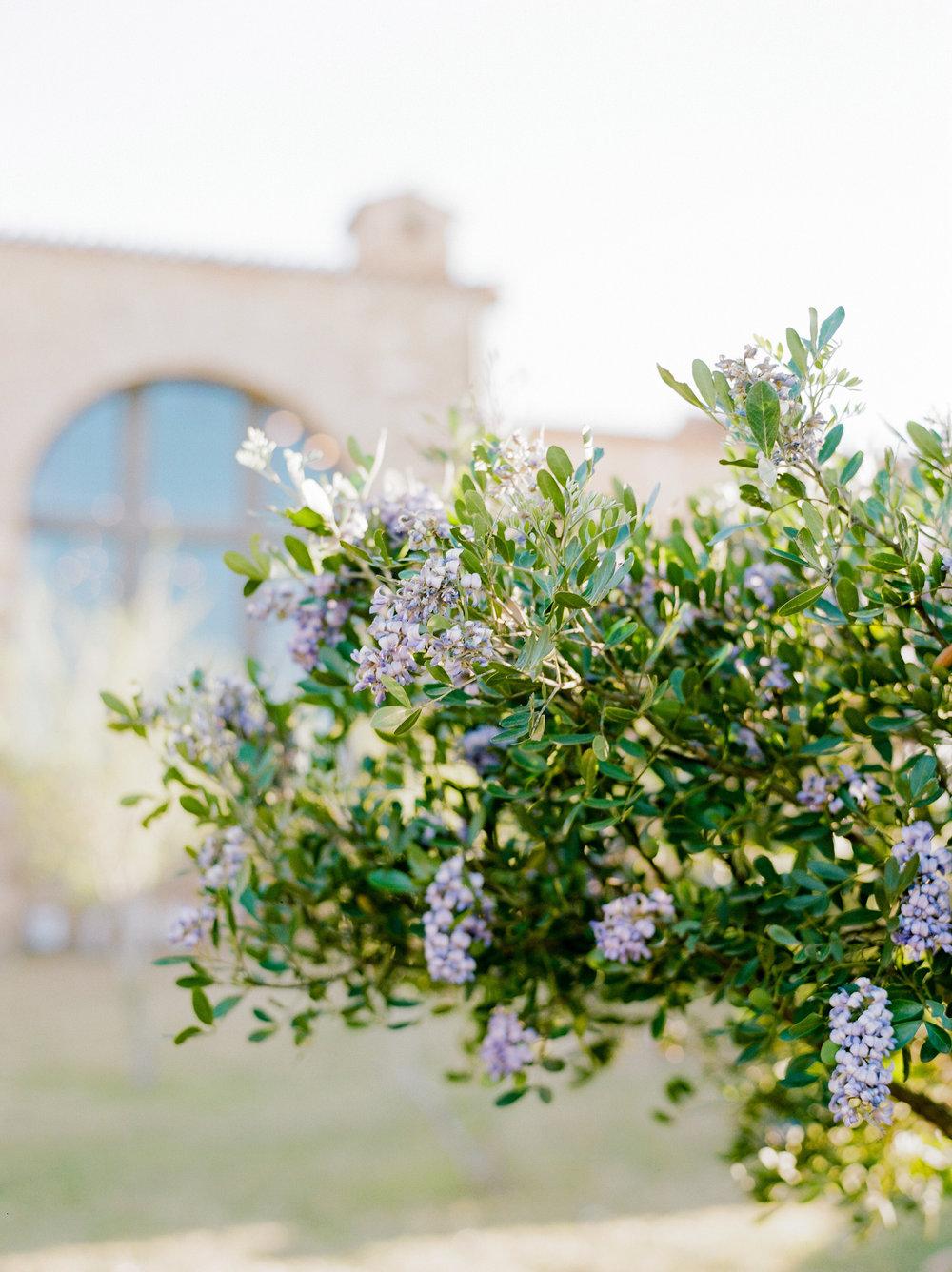Escondido-Golf_Lake-Club-Hill-Country-Houston-Wedding-Photographer-Best-Top-Luxury-Destination-Engagements-Portrait-Austin-Photography-75.jpg