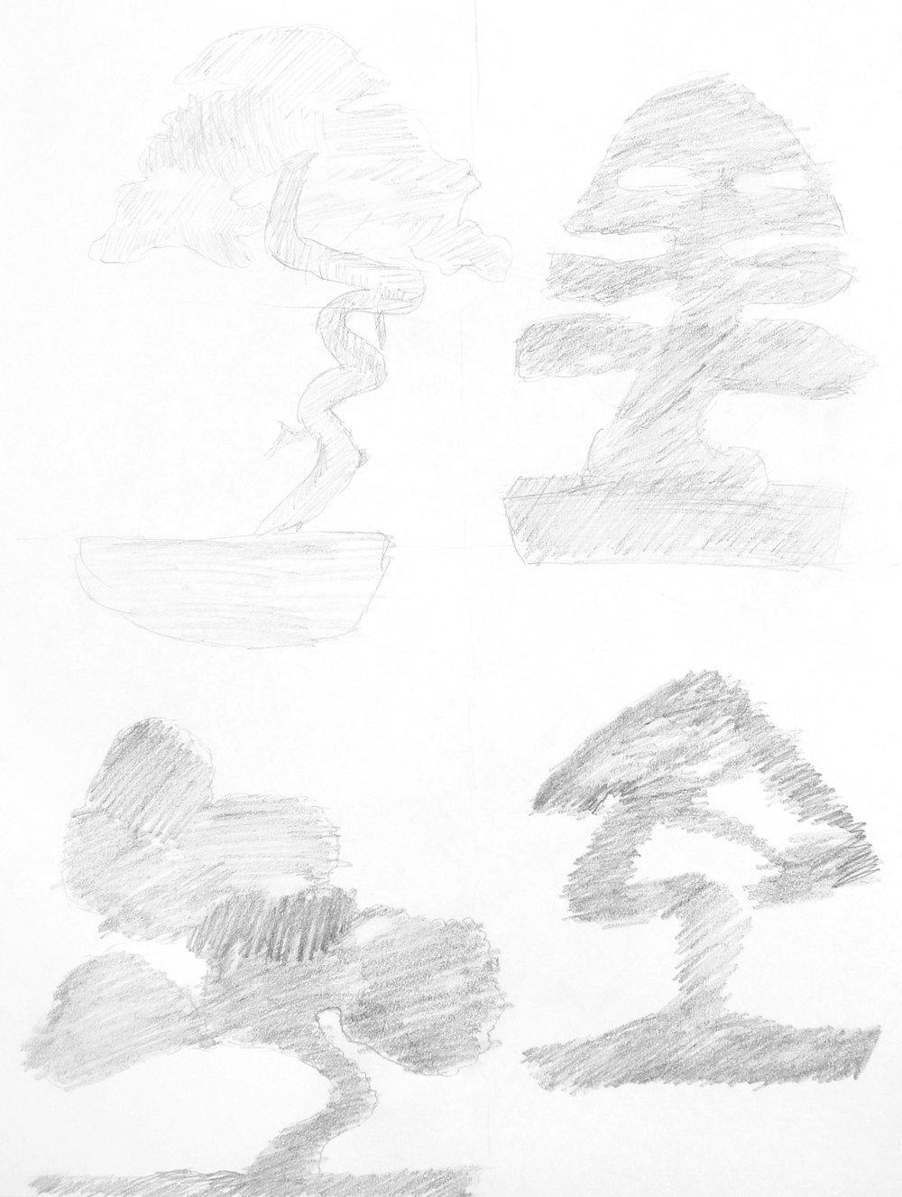 Silhouette Studies