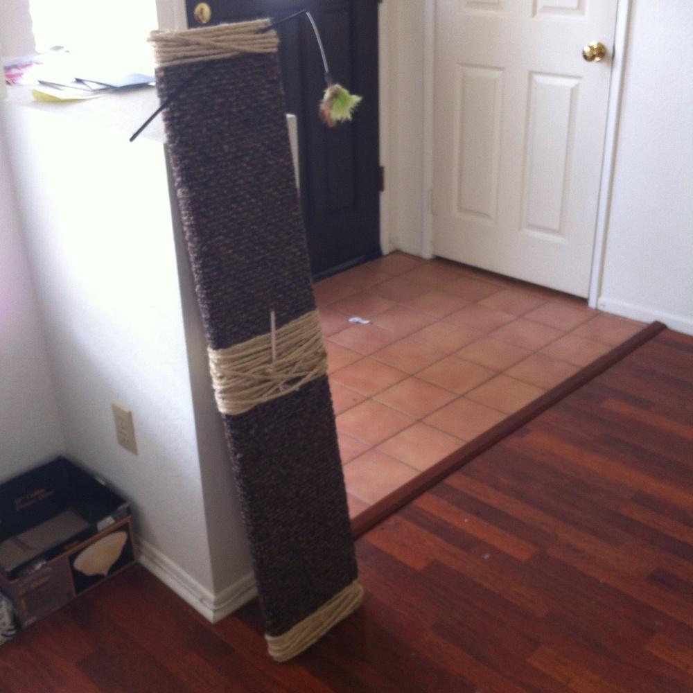 DIY Cat Scratch Board on TooIntoIt.com