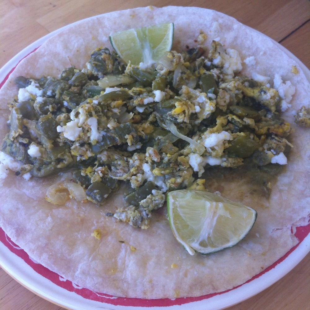 Nopales con Huevos on Too Into It