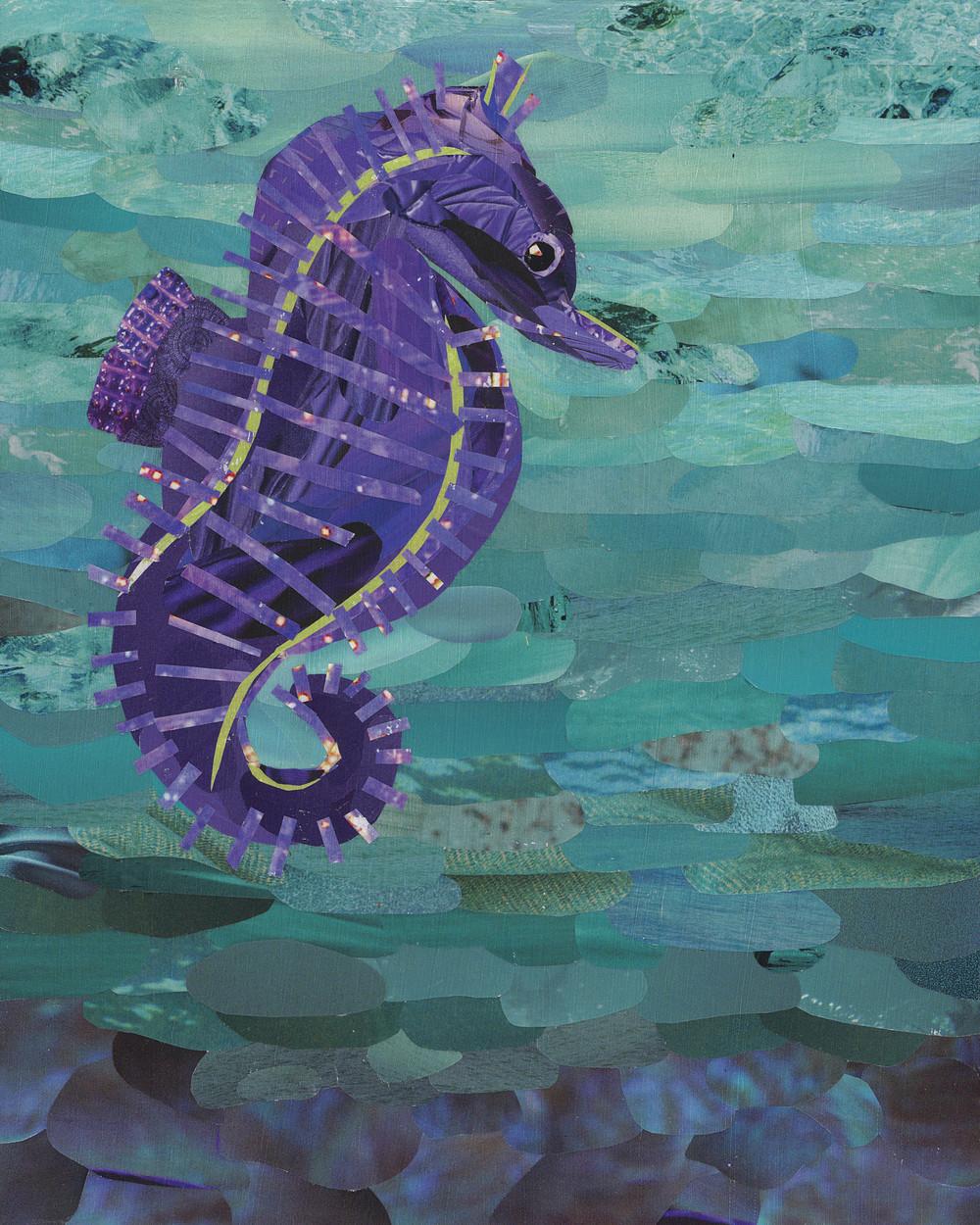 Mattie the Seahorse