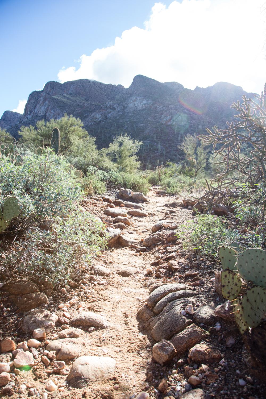 Arizona-2017-95.jpg