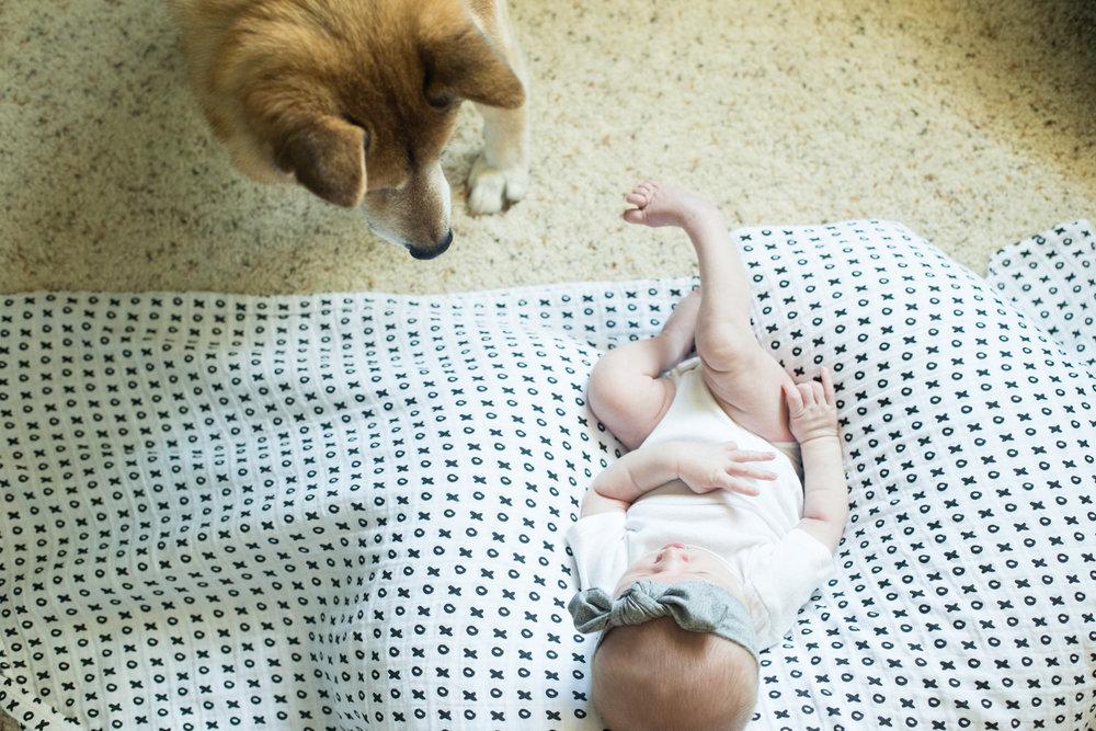 Sofia_newborn-118.jpg