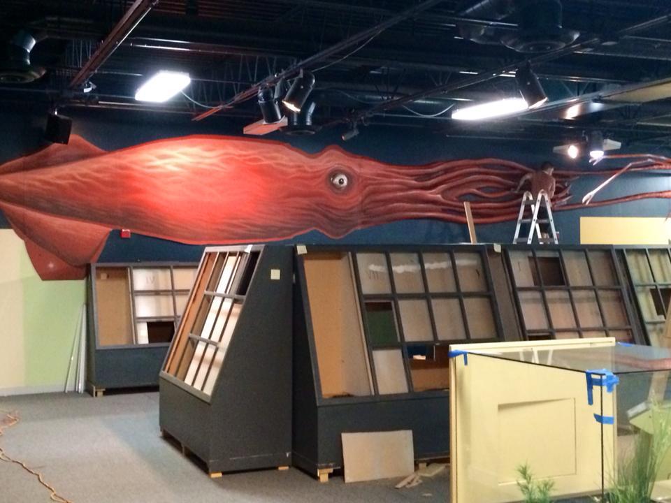 Client: Butterfly Pavilion