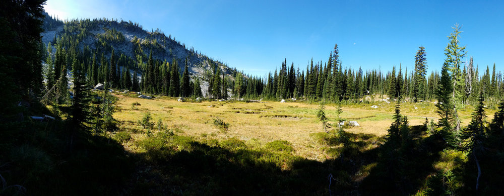 Meadow just north of Upper Wind Lake