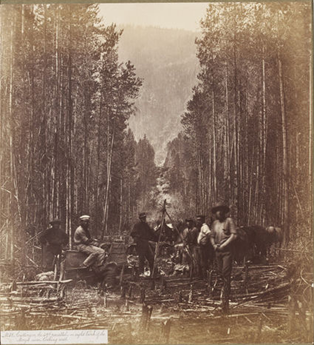 cascades_1860.jpg