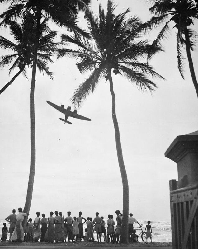 A Blenheim aircraft framed by palm trees on the jungle-fringed coastline of Ceylon.