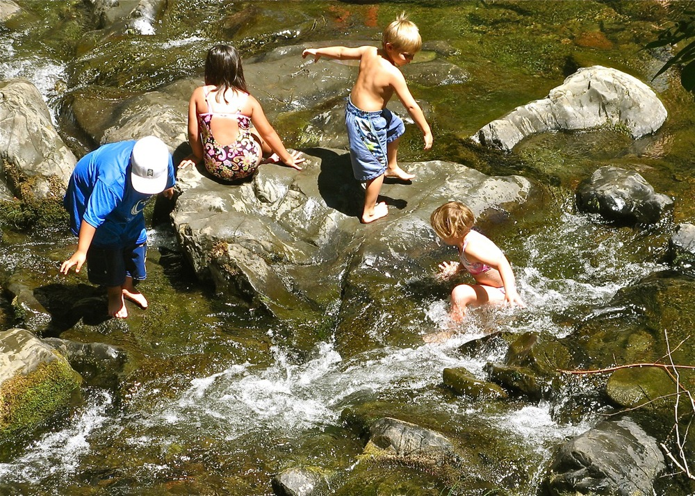 Summer Fun in the Creek