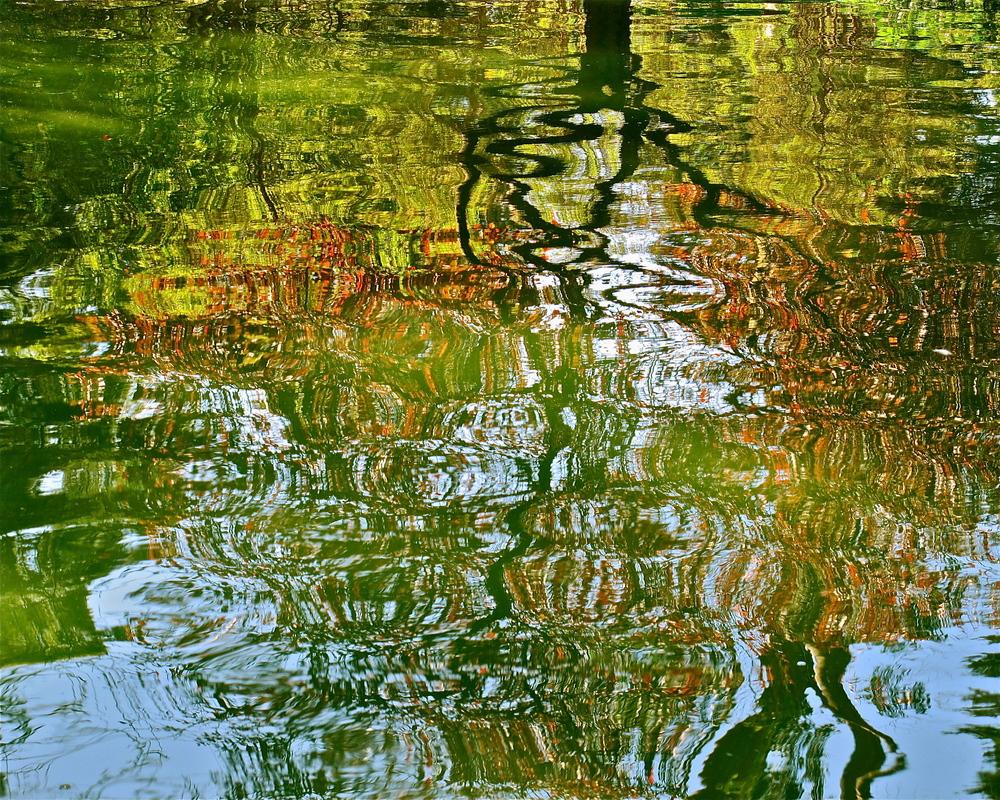Stow Lake Hyper-Realism