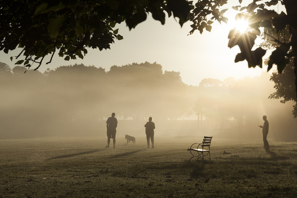 Park_Fog_03.jpg