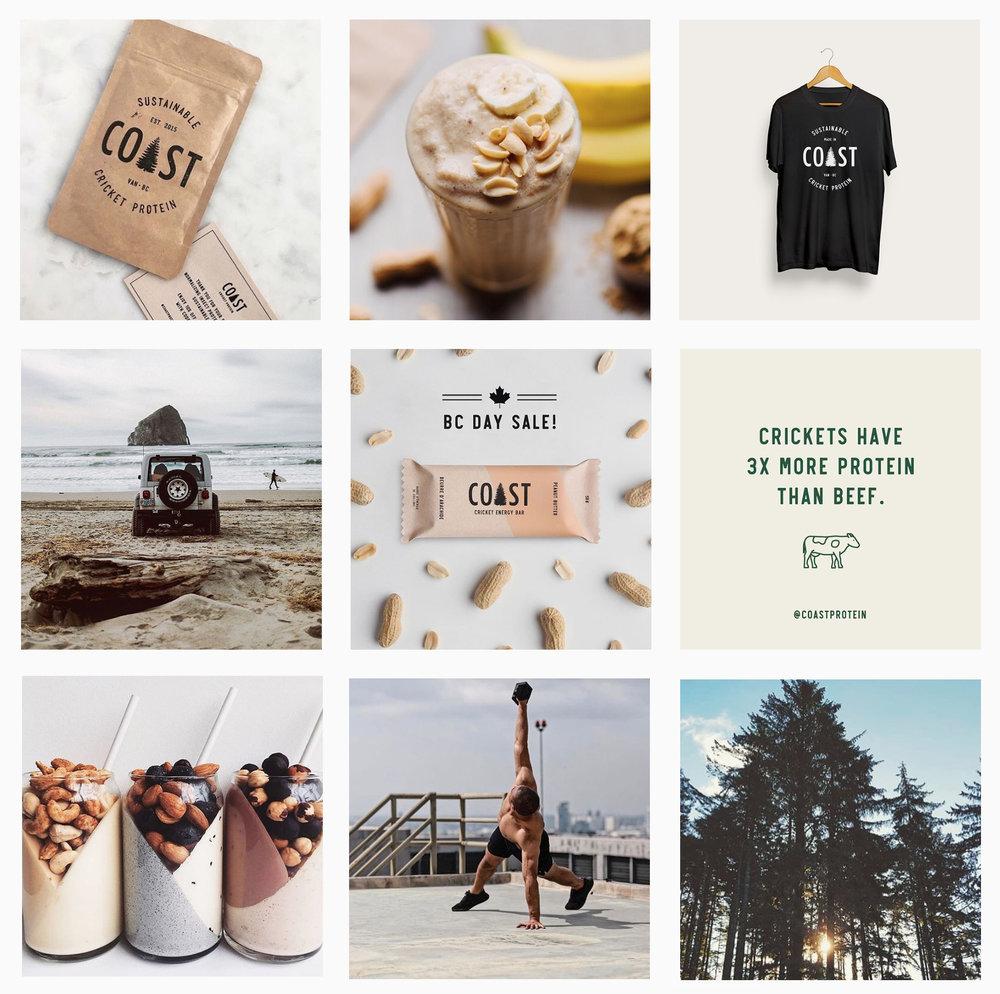 Coast-Protein-Brand-Instagram-Content.jpg