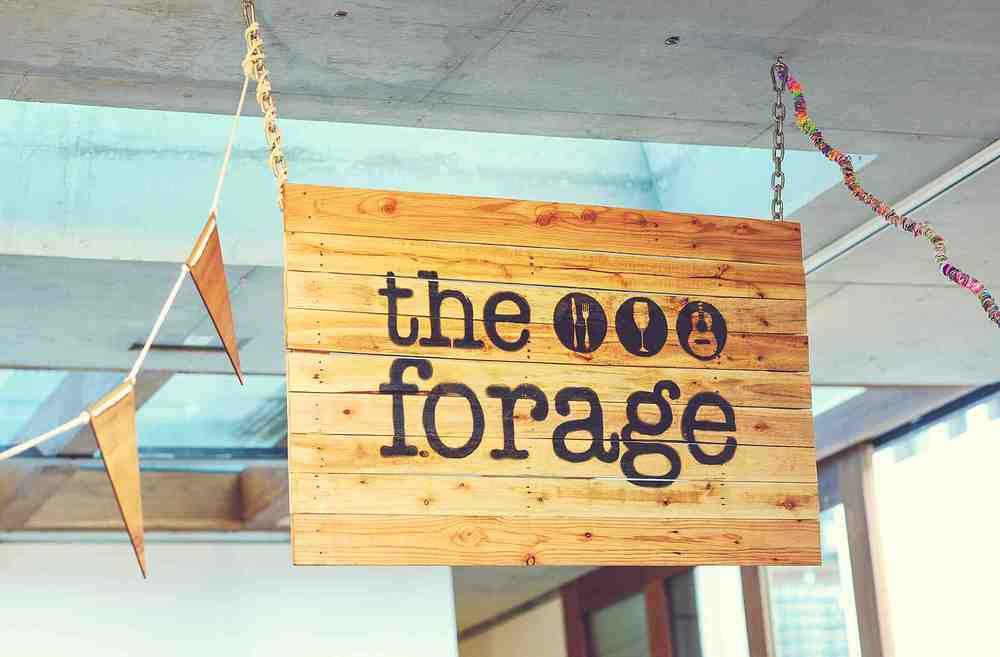 boyandgirlco_forage sign_ Rebecca Doyle Photography.jpg