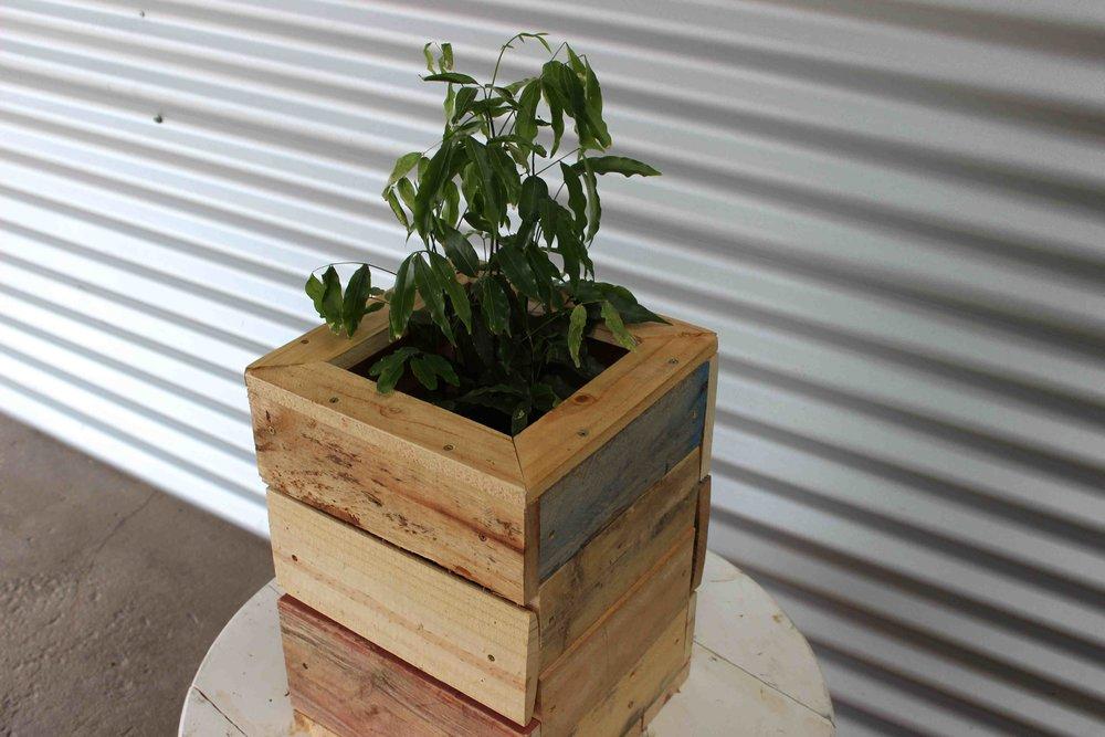 keira, planter box