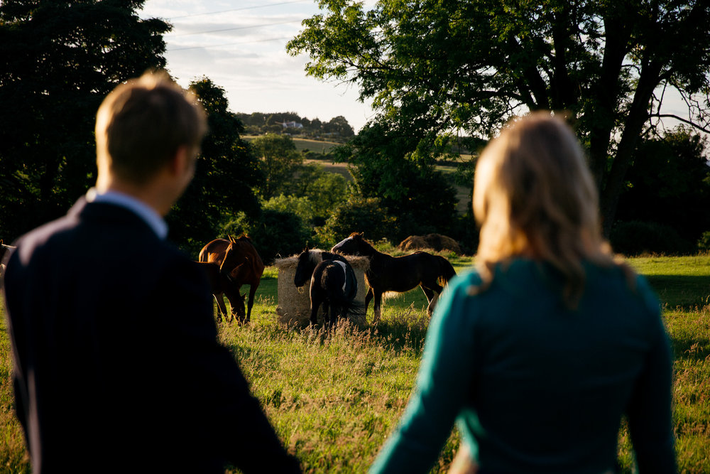 clairebyrnephotography-wedding-photography-ireland-engagement-sunset-farm-horses-42.jpg