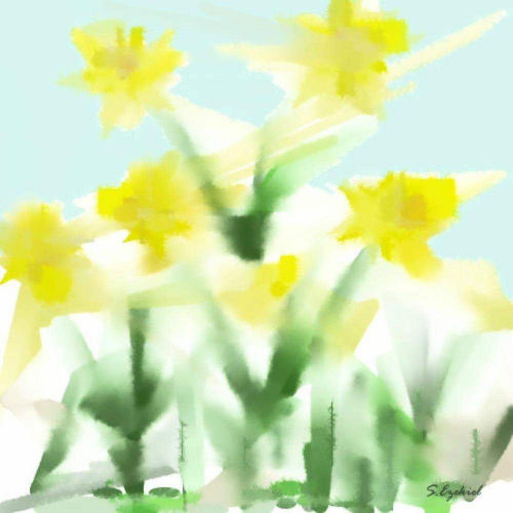 Daffodils.jpg