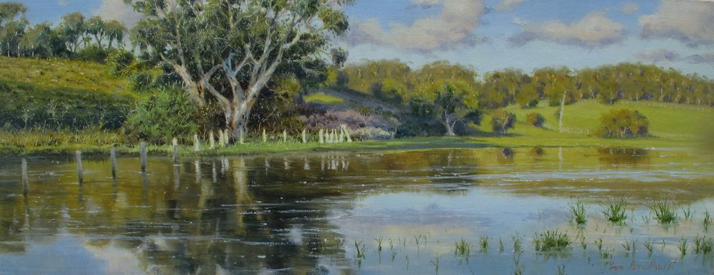FLOODED PASTURES