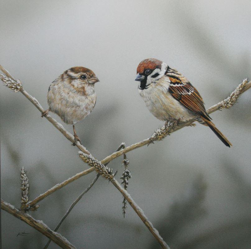 Title: Snow Sparrows