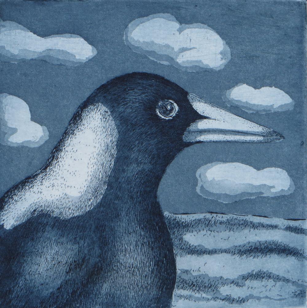 Title: Portrait of a Magpie